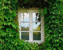 Fenêtre à rénover